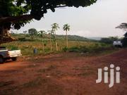 FOR SALE  Acres Of Farmland Situate At KONKO, AKUAPIM NORTH DISTRICT   Land & Plots For Sale for sale in Eastern Region, Akuapim North