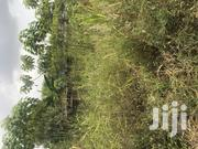 2 Plot of Land for Sale at Ablekuma Afuaman | Land & Plots For Sale for sale in Greater Accra, Ga West Municipal