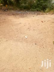 Land For Sale | Land & Plots For Sale for sale in Central Region, Awutu-Senya