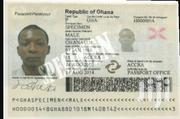 Express Biometric Passport | Travel Agents & Tours for sale in Greater Accra, Cantonments