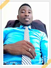Looking For Employment In Administration And Banking Sector.   Human Resources Jobs for sale in Brong Ahafo, Techiman Municipal