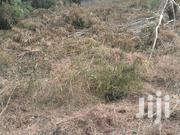 Land In Oduman For Sale | Land & Plots For Sale for sale in Greater Accra, Ga West Municipal
