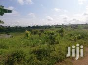 Land Is Duely Registered With All Documentations Ready | Land & Plots For Sale for sale in Central Region, Awutu-Senya