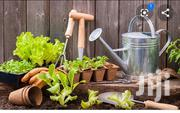 Am A Professional Gardener | Landscaping & Gardening Services for sale in Greater Accra, Achimota