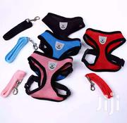Portable Dog Belt | Pet's Accessories for sale in Greater Accra, East Legon (Okponglo)