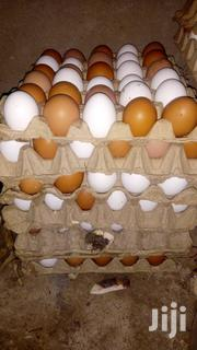 Get Your Eggs At An Affordable Price | Livestock & Poultry for sale in Greater Accra, Ga East Municipal