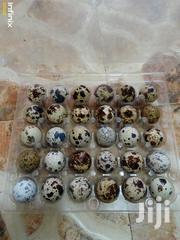 Quail Eggs | Livestock & Poultry for sale in Greater Accra, Ga West Municipal