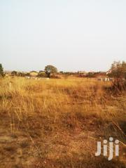 Litigating Free Land For Sale At Amanfrom- Katamanso (1 Plot Left)   Land & Plots For Sale for sale in Greater Accra, Achimota