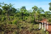Land for Sale | Land & Plots For Sale for sale in Ashanti, Afigya-Kwabre