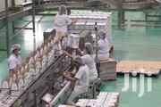 Milk Company Factory Hand Work Saudi Arabia | Travel & Tourism Jobs for sale in Greater Accra, North Kaneshie