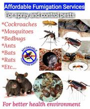Affordable Fumigation Services | Cleaning Services for sale in Greater Accra, Adabraka