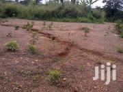 Two Plots of Land for Sale at Konkori Near Trede | Land & Plots For Sale for sale in Ashanti, Atwima Kwanwoma