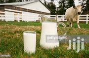 Organic Cow Milk | Meals & Drinks for sale in Greater Accra, East Legon