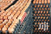 Fresh Brown Table Eggs | Livestock & Poultry for sale in Upper East Region, Kassena Nankana East