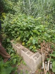 Land for Sale at Central University | Land & Plots For Sale for sale in Greater Accra, Tema Metropolitan