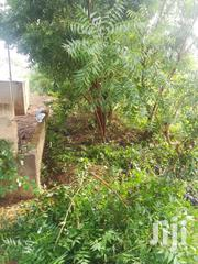 Hello People Genuine Land | Land & Plots For Sale for sale in Greater Accra, Tema Metropolitan