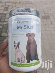 Mr Stud | Dogs & Puppies for sale in Greater Accra, South Shiashie
