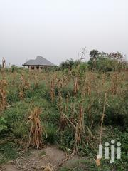 Titled Land at Kasoa Obom Road for Sale | Land & Plots For Sale for sale in Central Region, Awutu-Senya