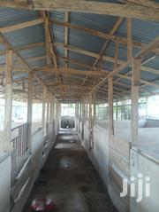 A Complete Pig Farm On A 2 And Half Plot Of Land.   Land & Plots For Sale for sale in Ashanti, Ejisu-Juaben Municipal