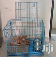 Metal Dog Cage For Sale | Pet's Accessories for sale in Greater Accra, Adenta Municipal