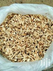 Oyster Mushroom | Feeds, Supplements & Seeds for sale in Greater Accra, Darkuman