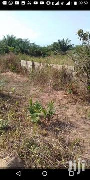 Two Plots Of Registered Land For Sale At Ghacem Estate Apowa | Land & Plots For Sale for sale in Western Region, Ahanta West