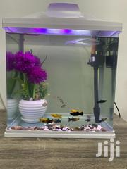 Aquarium With 14 Fishes | Fish for sale in Greater Accra, Odorkor
