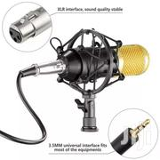 Studio And Radio Condenser Microphone | Audio & Music Equipment for sale in Greater Accra, Dansoman