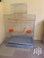 Parrot Bird Cage | Pet's Accessories for sale in Greater Accra, Dansoman