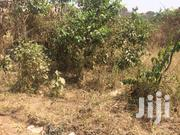 Plot of Land for Sales | Land & Plots For Sale for sale in Ashanti, Afigya-Kwabre
