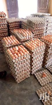EGGS FORSALE | Other Animals for sale in Brong Ahafo, Dormaa Municipal