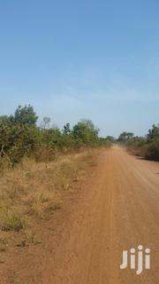 Farmland for Sale (2,000 Acres) | Land & Plots For Sale for sale in Brong Ahafo, Kintampo North Municipal