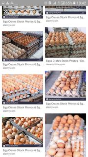 Fresh Eggs For Sale | Meals & Drinks for sale in Greater Accra, Adenta Municipal