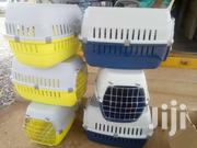 Plastic Crate | Pet's Accessories for sale in Greater Accra, Achimota