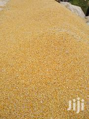 Certified Seed And Grain   Feeds, Supplements & Seeds for sale in Ashanti, Ejura/Sekyedumase