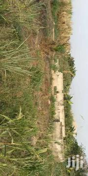 Land For Sale At Daaban New Site Area   Land & Plots For Sale for sale in Ashanti, Kumasi Metropolitan