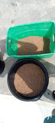 Rabbit Pellets | Pet's Accessories for sale in Central Region, Awutu-Senya