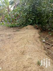 Plot Of Lands For Sale At Teacher Mantle Township 100*100 Ft | Land & Plots For Sale for sale in Eastern Region, Suhum/Kraboa/Coaltar