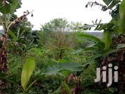 Land On Sale | Land & Plots For Sale for sale in Central Region, Abura/Asebu/Kwamankese