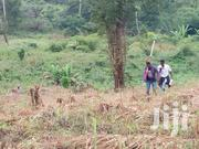 2 Plots Of Land Forsale   Land & Plots For Sale for sale in Eastern Region, Akuapim North