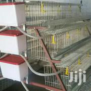 Layer Chicken Eggs Cages | Farm Machinery & Equipment for sale in Greater Accra, Tema Metropolitan
