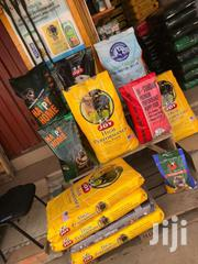 Puppy | Dogs & Puppies for sale in Greater Accra, North Kaneshie