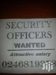 Security Dog Handler Needed Urgently At Hatso   Accounting & Finance Jobs for sale in Greater Accra, Adenta Municipal