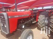Massey Ferguson 290 Xtra   Livestock & Poultry for sale in Greater Accra, Apenkwa