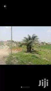 Plot Of Land For Sale At Buoho Apagya | Land & Plots For Sale for sale in Ashanti, Kwabre
