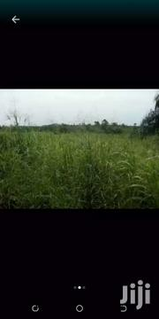 Land One Plot For Sale At Suhum   Land & Plots For Sale for sale in Greater Accra, Akweteyman