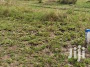 Acquire A Piece Of Land At Dodowa   Land & Plots For Sale for sale in Greater Accra, Akweteyman
