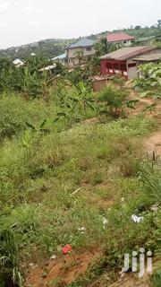 Land For Sale At Very Cheap And Affordable Price At Nsawam | Land & Plots For Sale for sale in Greater Accra, Ga South Municipal