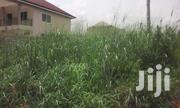 Land For Sale At Amasaman | Land & Plots For Sale for sale in Greater Accra, Roman Ridge