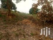 Plot Of Land Forsale   Land & Plots For Sale for sale in Eastern Region, Akuapim North